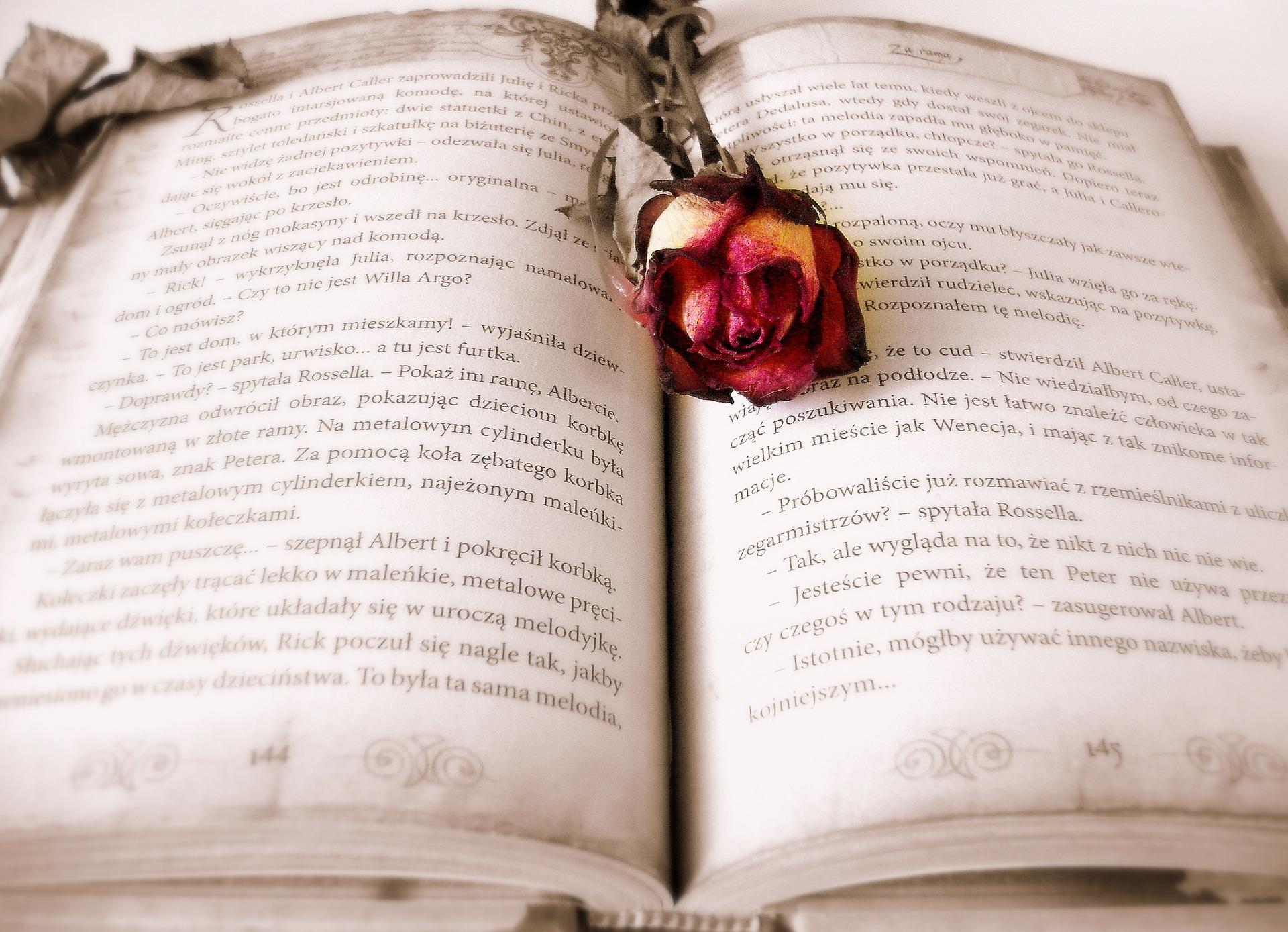 a standard eulogy format how to write a eulogy