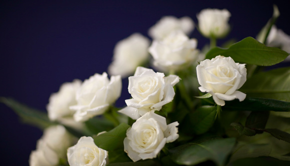 what is the best funeral flower etiquette how to write a eulogy