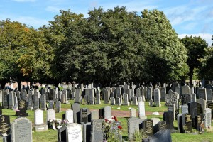 cemetery-959412_1920
