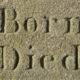 born-1264699_1920